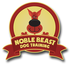 Puppy & Dog Training – Denver CO